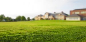 A Vastu friendly Directions for Lawn and 10  important Vastu Tips for Lawn