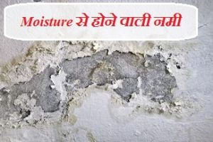 घर में सीलन को कैसे रोके | how to treat damp walls and its causes